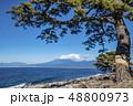 静岡県沼津市の大瀬崎(おせざき)から松の木と海越しの富士山の眺望 48800973