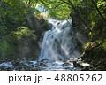 夏の浅間大滝 48805262