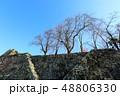 津山城 城 石垣の写真 48806330