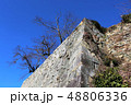 津山城 城 石垣の写真 48806336