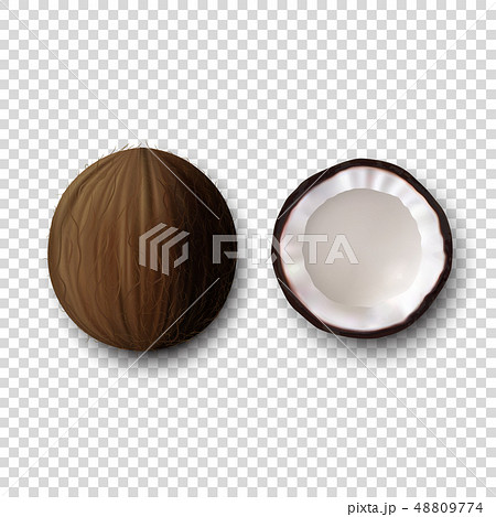 Vector 3d Realistic Whole and Halves Coconut Icon Set Closeup Isolated on Transparent Background 48809774