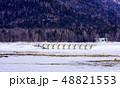 タウシュベツ川橋梁 糠平湖の湖底 上士幌町 48821553