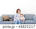 ファミリー 愛犬 室内犬 48825217