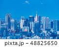 東京都市風景 代々木・新宿 48825650