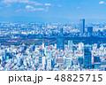 東京都市風景 春 48825715