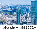 東京都市風景 春 48825720