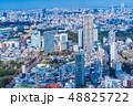 東京都市風景 春 48825722