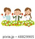 女子旅 女性 苺のイラスト 48829905