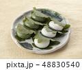かしわ餅 48830540