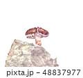 椎茸 シイタケ栽培  48837977