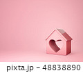 pink house 48838890