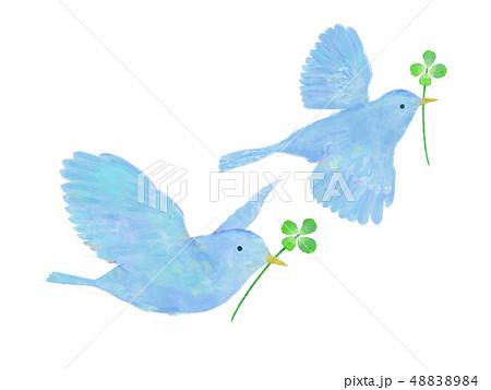 鳥と四つ葉のクローバー 水彩 手書き風 赤い鳥 48838984