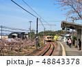 ローカル駅 48843378