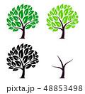 木 アイコン 樹木のイラスト 48853498