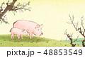 動物 ブタ 春のイラスト 48853549