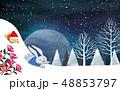 クリスマス 夜空 景色のイラスト 48853797