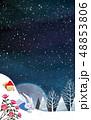 森林 林 森のイラスト 48853806