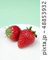 イチゴ 48853932