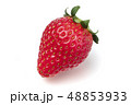イチゴ 48853933