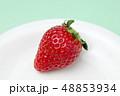 イチゴ 48853934