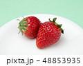 イチゴ 48853935
