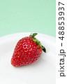 イチゴ 48853937