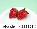 イチゴ 48853938