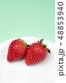 イチゴ 48853940