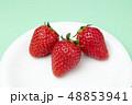 イチゴ 48853941