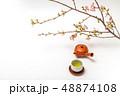 お茶の会 green tea made in Japan 48874108