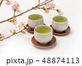 お茶の会 green tea made in Japan 48874113