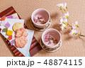 お茶の会 green tea made in Japan 48874115