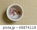お茶の会 green tea made in Japan 48874118
