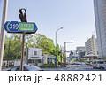 【新緑 いちょう】 48882421