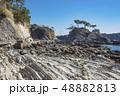 【荒崎海岸】 48882813