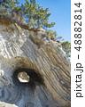 【荒崎海岸 洞窟】 48882814