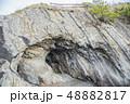 【荒崎海岸 洞窟】 48882817