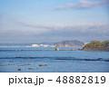 【逗子マリーナ】 48882819