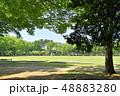 茨城県つくば市 洞峰公園 48883280