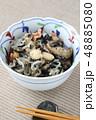 ひじきの煮物 48885080
