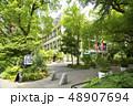 道 植物 都会の写真 48907694
