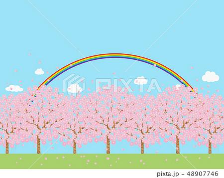 桜並木 48907746