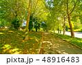 オーストリア・ウィーンの遊歩道 48916483