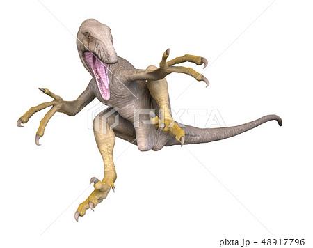 恐竜 48917796