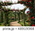 薔薇のアーチの小径 48919368