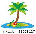 ハイビスカス 夏 南国のイラスト 48923127