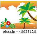 ハイビスカス 夏 南国のイラスト 48923128
