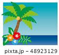 ハイビスカス 夏 南国のイラスト 48923129