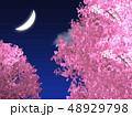 三日月と綺麗な夜の桜 48929798