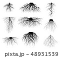 Silhouette Black Tree Roots Various Types Shapes Set. Vector 48931539